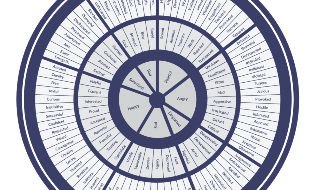 The Feeling Wheel - TheDadTrain.com